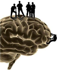 climbing brain