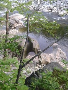 elephant boulder
